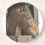 Thoroughbred Horse Coasters