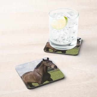 Thoroughbred Horse Cork Coasters