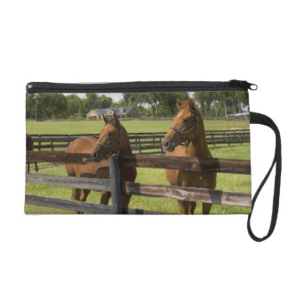 Thoroughbred horse farm in Marion County, Wristlet Purse