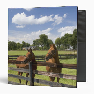 Thoroughbred horse farm in Marion County, 3 Ring Binders