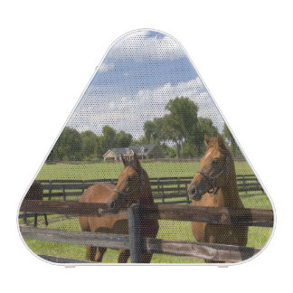 Thoroughbred horse farm in Marion County, Bluetooth Speaker