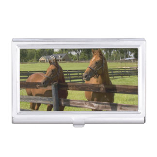Thoroughbred horse farm in Marion County, Case For Business Cards