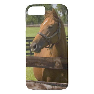 Thoroughbred horse farm in Marion County, iPhone 8/7 Case