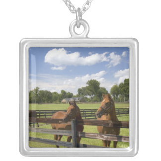 Thoroughbred horse farm in Marion County, Silver Plated Necklace