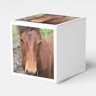 Thoroughbred Horse Favor Box