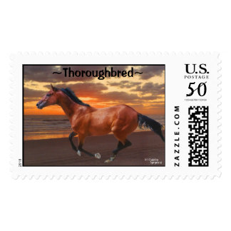 Thoroughbred Horse Galloping Sunrise Postage