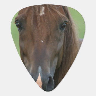 Thoroughbred Horse Guitar Pick
