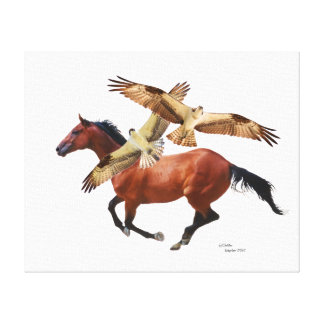Thoroughbred Horse Hawks Canvas Stretched Canvas Print