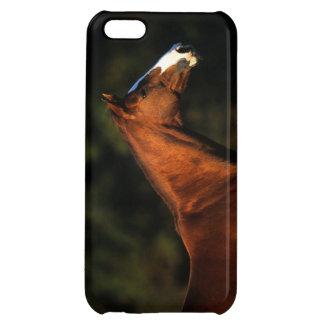 Thoroughbred Horse Headshot iPhone 5C Cover