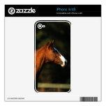 Thoroughbred Horse Headshot Skins For iPhone 4