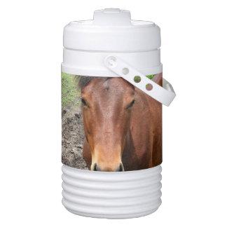 Thoroughbred Horse Igloo Beverage Cooler