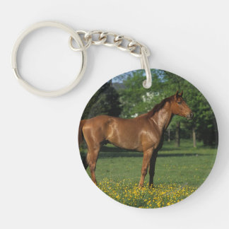 Thoroughbred Horse in Flowers Keychain