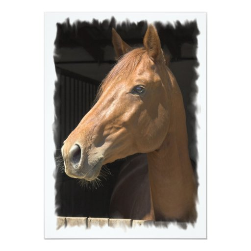 Thoroughbred Horse Invitation