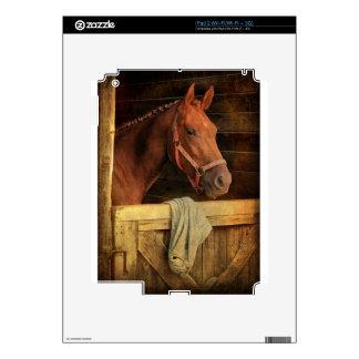 Thoroughbred Horse iPad 2 Decals