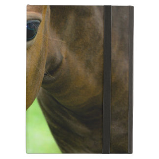 Thoroughbred Horse Case For iPad Air