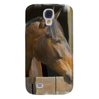 Thoroughbred Horse iPhone 3G Case Galaxy S4 Covers