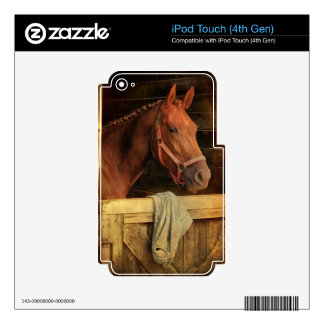Thoroughbred Horse iPod Touch 4G Skins