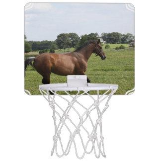 Thoroughbred Horse Mini Basketball Hoop