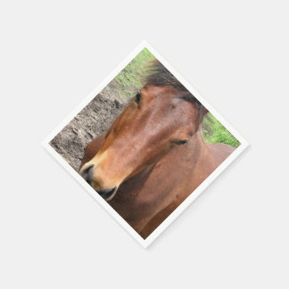 Thoroughbred Horse Paper Napkins