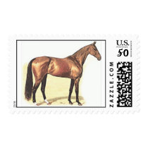 Thoroughbred Horse Postage