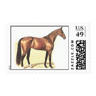 Thoroughbred Horse Postage Stamps