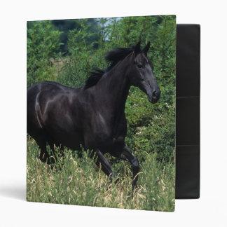 Thoroughbred Horse Running in Grass 3 Ring Binder