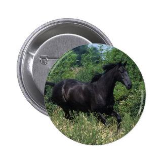 Thoroughbred Horse Running in Grass Pinback Button