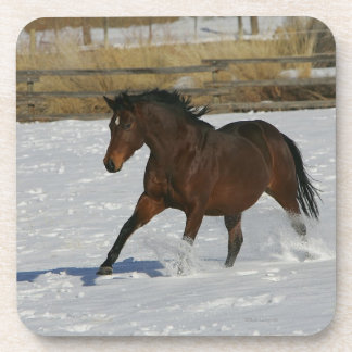Thoroughbred Horse Running in the Snow Coaster