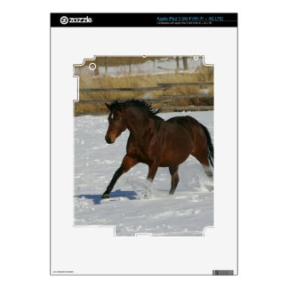 Thoroughbred Horse Running in the Snow iPad 3 Decals
