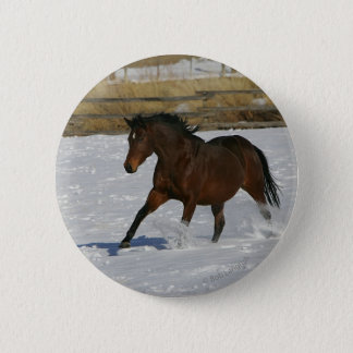 Thoroughbred Horse Running in the Snow Pinback Button
