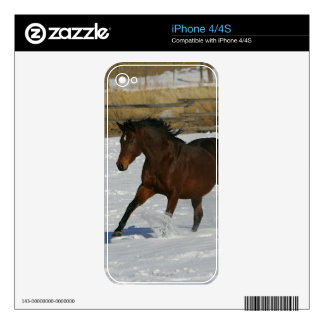 Thoroughbred Horse Running in the Snow Skin For The iPhone 4