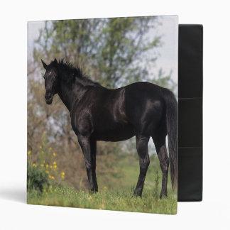 Thoroughbred Horse Standing Binder