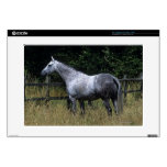 """Thoroughbred Horse Standing by Fence Decal For 15"""" Laptop"""