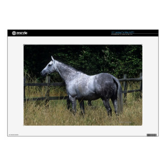 "Thoroughbred Horse Standing by Fence Decal For 15"" Laptop"