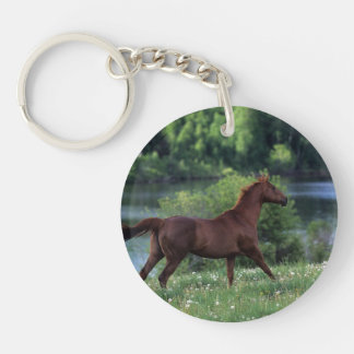 Thoroughbred Horse Standing in Flowers Keychain