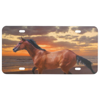 Thoroughbred horse Sunrise License Plate