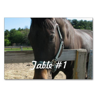 Thoroughbred Horse Table Card