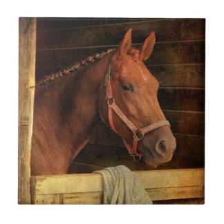 Thoroughbred Horse Tiles