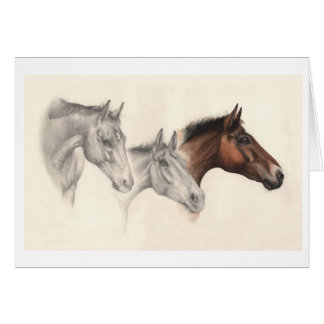 Thoroughbred Horses Drawn and Painted Card