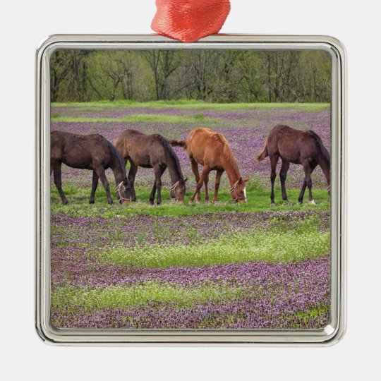 Thoroughbred horses in field of henbit flowers metal ornament
