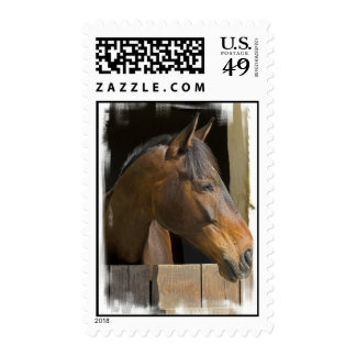 Thoroughbred Horses Postage Stamp