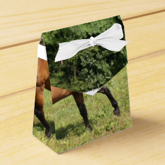 Thoroughbred in a Field Party Favor Boxes