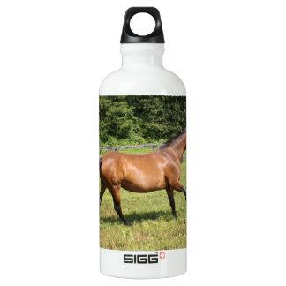 Thoroughbred in a Field SIGG Traveler 0.6L Water Bottle