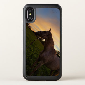 Thoroughbred in Sunset Speck iPhone X Case