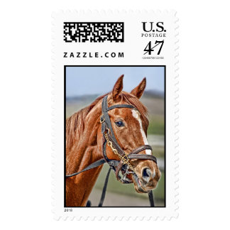 Thoroughbred Kentucky Derby 2009 Postage