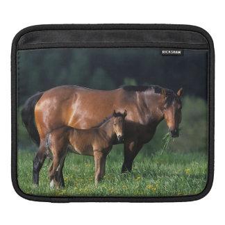 Thoroughbred Mare & Foal 1 iPad Sleeve