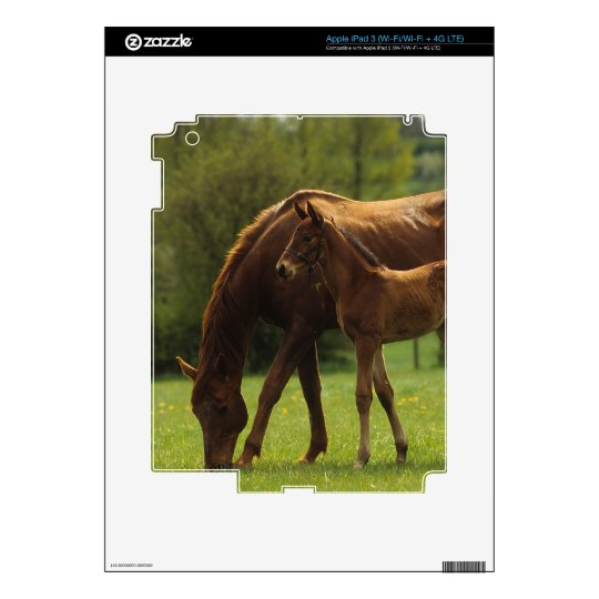 Thoroughbred Mare & Foal 2 iPad 3 Skin