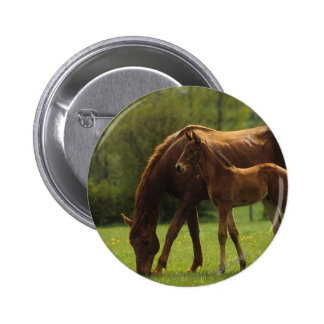 Thoroughbred Mare & Foal 2 Pinback Button