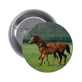 Thoroughbred Mare & Foal 3 Button