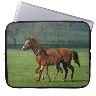Thoroughbred Mare & Foal 3 Laptop Computer Sleeves